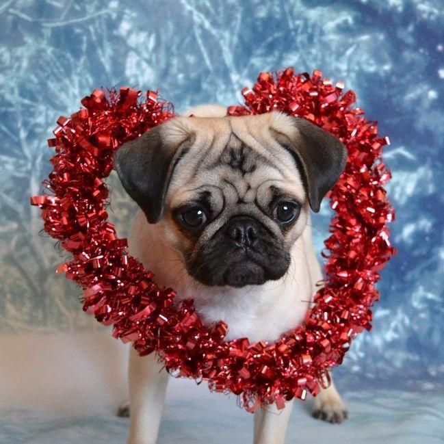 valentine-heart-valentines