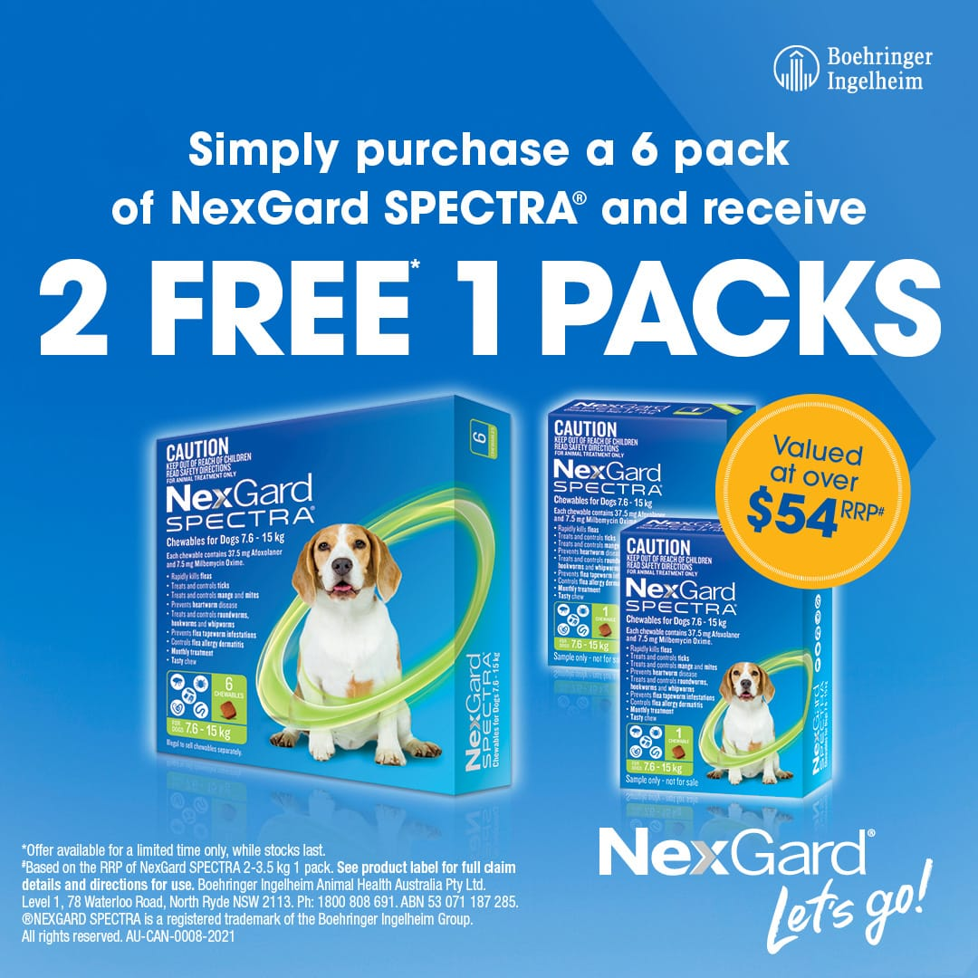Spectra 6 Pack Promo