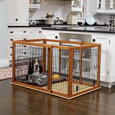 dog-in-crate
